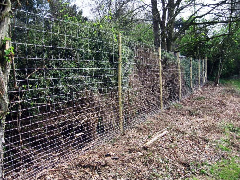 Garden And Deer Fencing Tower Fence Products